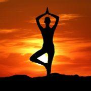 Yoga Ecommerce Starter Websites